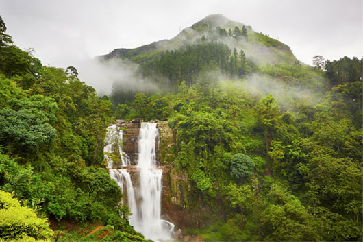 Пик Адама. Шри-Ланка